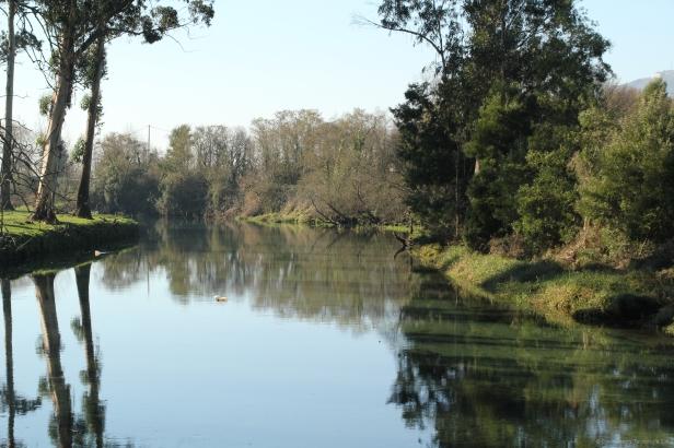 Río Tamuxe (O Rosal)