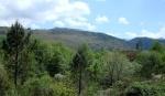 Parque Natural de Baixa Limia- Serra do Xurés