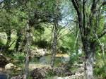 Paseo fluvial del río Caldo (Lobios)