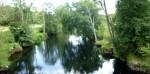 Paseo Fluvial del Arenteiro