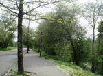 Parque Municipal de O Carballiño