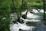Entorno natural del río Arenteiro