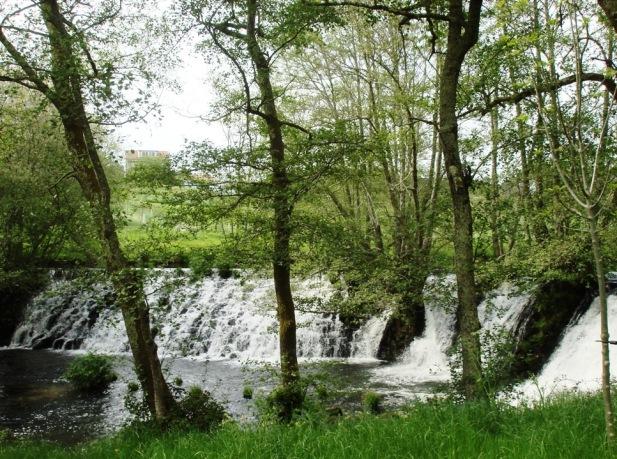 Entorno natural del Paseo Fluvial del río Arenteiro (O Carballiño)