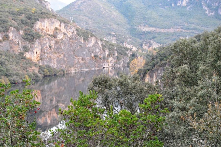 Flora del Parque Natural
