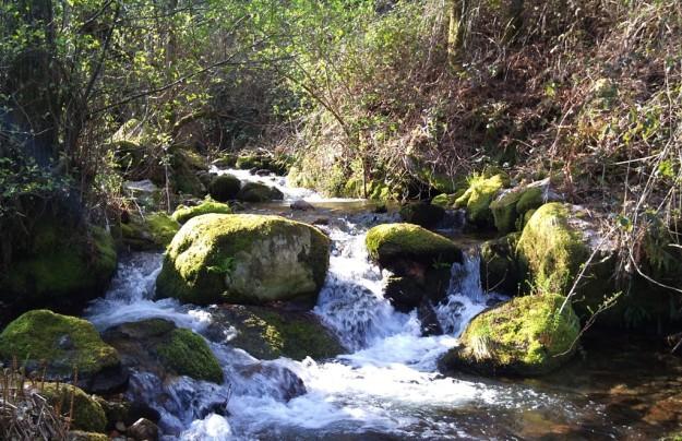 Río Troncoso