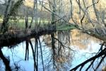 Río Miño (Ínsuas do Miño) a su paso por Rábade