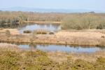 Panorámica de la Lagoa de Cospeito