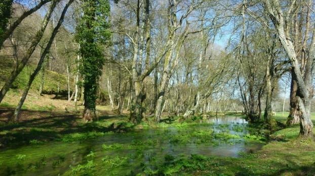 """Río MIño Ruta """"Augas de Fonmiñá"""""""