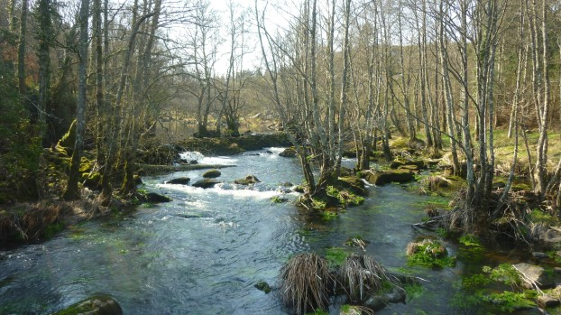 Río Parga (LIC Parga-Ladra-Támoga)