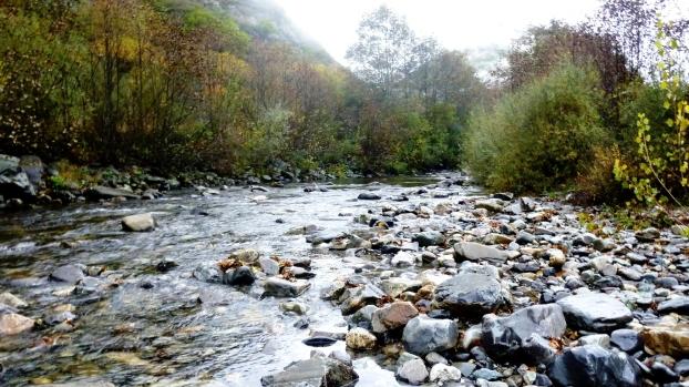 Reserva Natural Fluvial del río Burbia (Vega de Espinaredo)